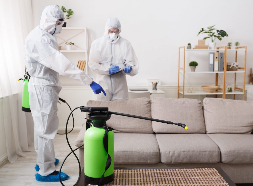 limpieza de sofa